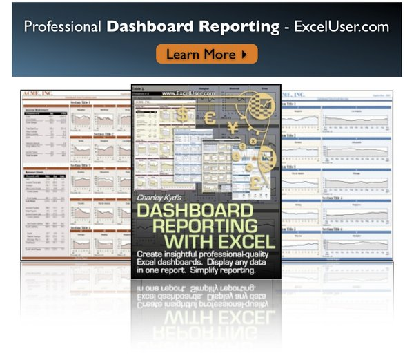 Create Professional Dashboard Reports with Excel