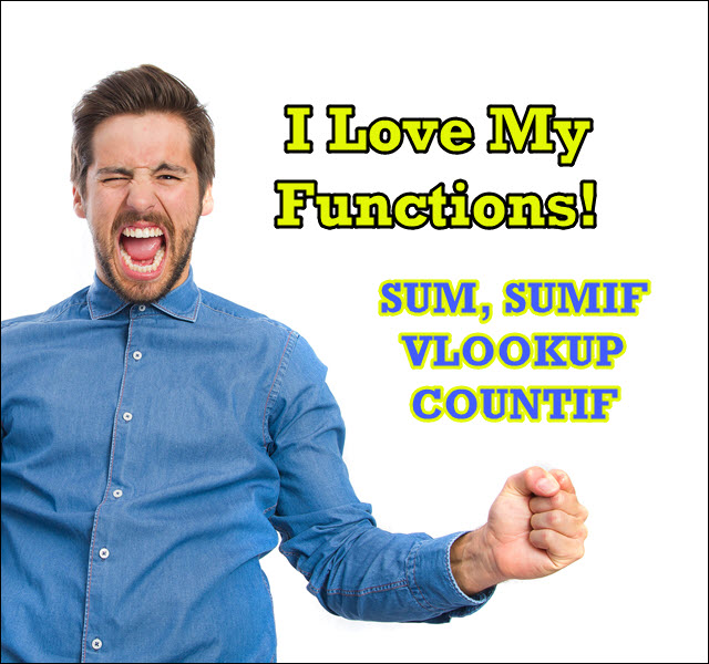 [IMAGE] I love my functions! Sum, Sumif, Vlookup, Countif