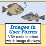[Image] Using images in Excel User Forms
